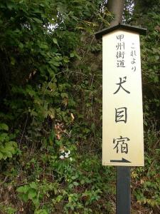 Ohgiyama Trek(Yamanashi) 犬目宿(扇山トレッキング, 山梨)