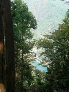 鹿倉山トレッキング(奥多摩) Shishikurayama Trek (Okutama)