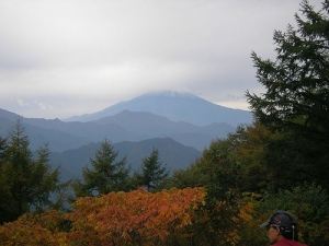 Ohgiyama Trek(Yamanashi) 扇山の頂上(山梨)