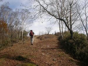 To Mt.Takanosuyama 鷹ノ巣山へ(雲取山縦走)