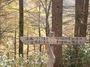 七ツ石山から高丸山へ(石尾根縦走路) Mt.Kumotoriyama Trek