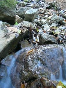 Mt.Kumotoriyama Trek サオラ峠から三条の湯へ(雲取山縦走)